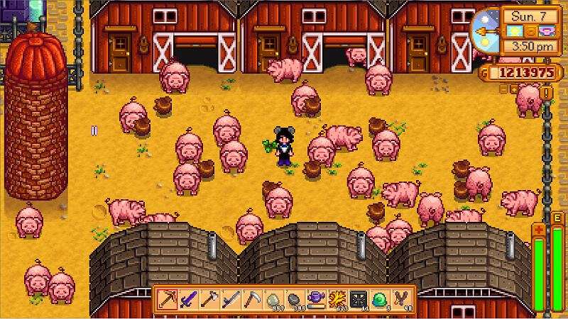 Pig Barn Stardew Valley