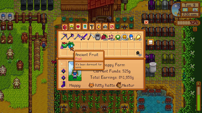Stardew Valley Ancient Fruit