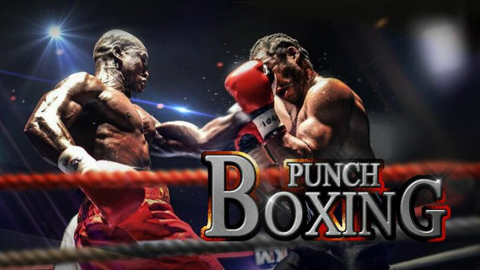 Punch Boxing 3D Android