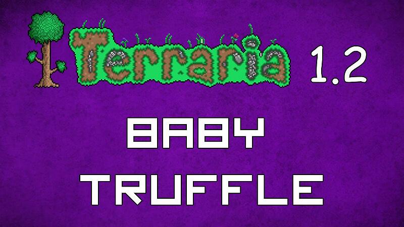 Baby Truffle