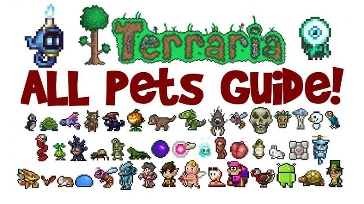 Terraria Pets Guide And Where To Find Them Gamescrackorg