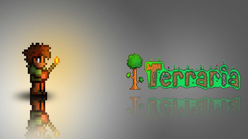 Terraria Tmodloader: List of the Best Mods   GamesCrack org
