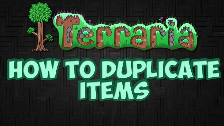 Terraria Duplicate Items