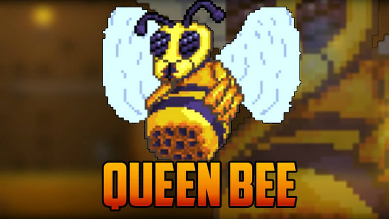 Terraria Queen Bee