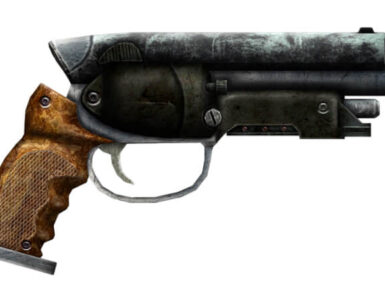 Fallout New Vegas That Gun