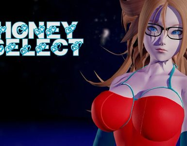 Honey Select Party