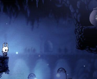 Hollow Knight Grubs